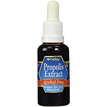 Amazon.com: Brasil Propolis Green BEE Propolis: Extracto ...