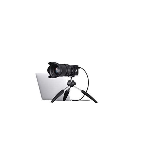 RetinaPix Sigma FP Mirrorless Digital Camera with 45MM F2.8 DG DN L Mount Lens Kit