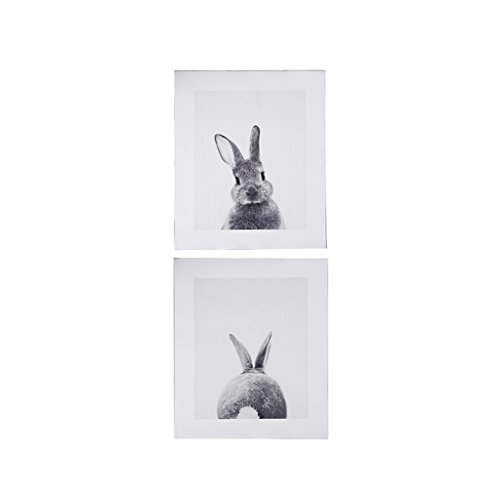 Cuawan Rabbit Tail Canvas Art Print Poster Bunny Canvas Painting Nordic Wall Decor (15.75in 11.81in)