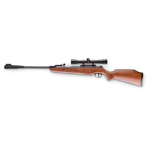 Ruger Silent Hawk .177 Caliber Air Rifle