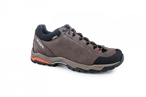 Scarpa Daylite GTX Zapatillas de senderismo -