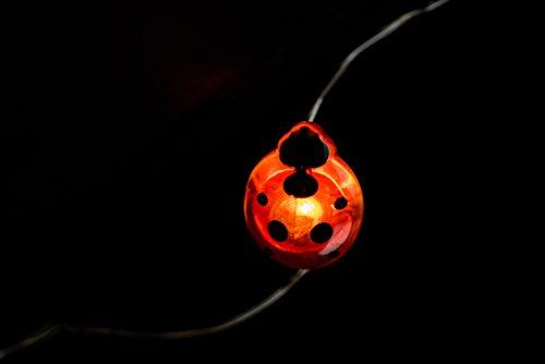 Boston Warehouse Ladybug Large Led String Lights (Lights Ladybug)