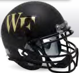 Riddell Wake Forest Demon Deacons NCAA Schutt Mini Football Helmet Office Desk Caddy ()