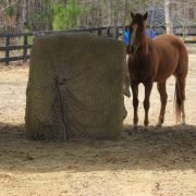 Freedom Feeder 5' Round Mesh Bale Net for Horse Feeder — Designed to Fit Over Large Round or Square Bale of Hay — Reduce Horse Feeding Anxiety and Behavioral Issues by Freedom Feeder FF (Image #1)