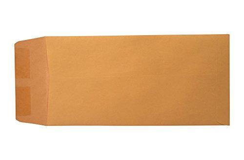 Blank License Plate Envelopes (Moist and Seal)