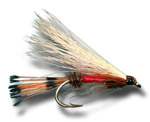 (Royal Coachman Streamer Fly Fishing Fly - Size 8 - 6 Pack)