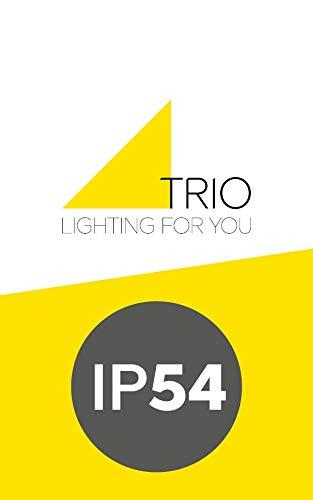 Antracite Trio Leuchten Harlem Trio 220960142 Lampada da Parete per Esterni LED 6 W