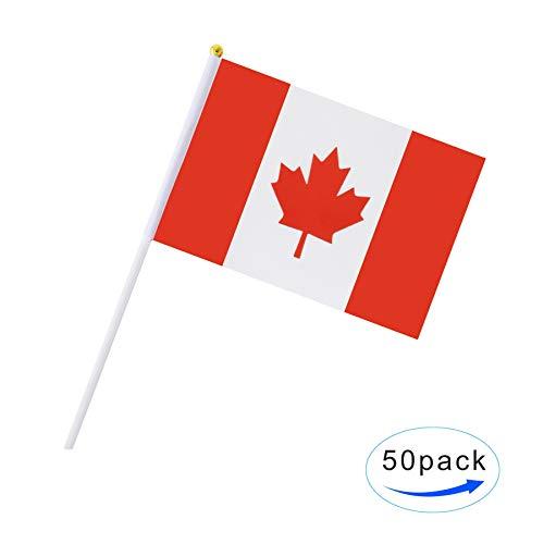 Hand Held Canada Flag Canadian Flag Stick Flag Mini Flag 50