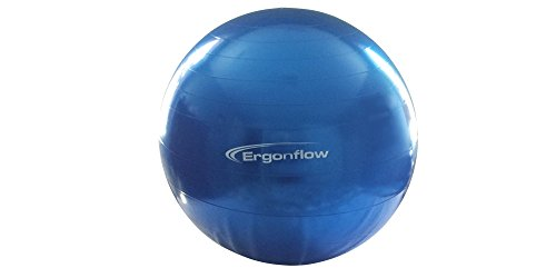 Exercise Ball Yoga Ball Swiss Ball Anti burst Material Rated for 1200 lbs For Exercise and Postural Training Comes with Pump
