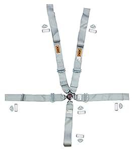 "RCi 9210CPL Platinum Series 3"" Black SFI 16.1 Seat Belt, Pull Down, 5-6 Point, Cam-Lock"