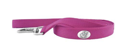 Zep-Pro Pink Nylon Concho Pet Lead, Kansas Jayhawks, 6-Feet