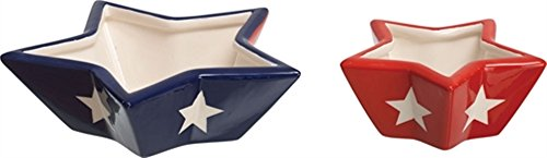 Star Shaped Bowls - Dolomite - Set of 2 July 4th home decor - Cute patriotic home decor - two red white and blue bowls