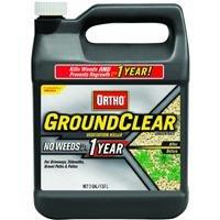 Ortho GroundClear Vegetation Killer Concentrate 2Gallon