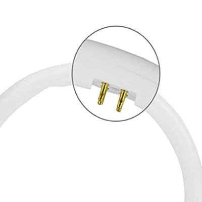 CCDZ 22W 32W 40W Circular LED Tube T5 T8 round tube light circle Ring lamp