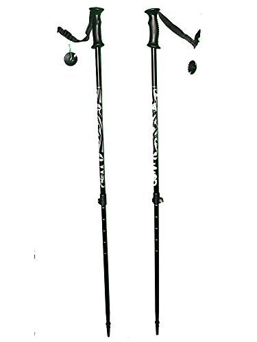 WSD Telescopic Adjustable Collapsible Alpine Ski Poles