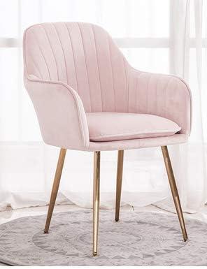 Chaise de Salle à Manger Moderne de Chaise de Velours