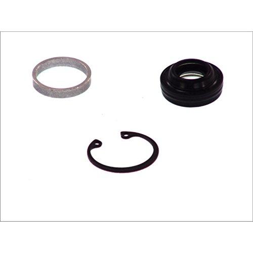 Santech Industries MT2187 A/C Compressor Shaft Seal Kit
