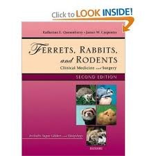 Ferrets, Rabbits and Rodents: Clinical Medicine and Surgery (Ferrets, Rabbits & Rodents) 2nd (second) edition Text Only by Example Product Manufacturer