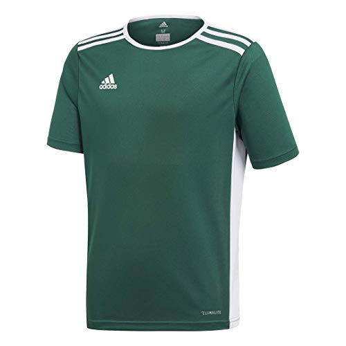 adidas Youth Entrada 18 Jersey, Collegiate Green/White, Medium (Jersey Outlets)