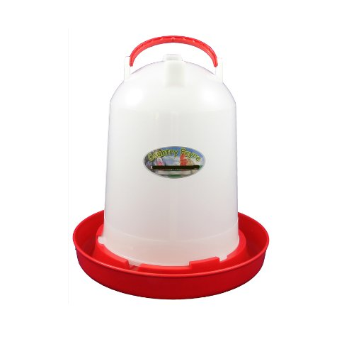 6 litre Economy Chicken Drinker Red and White with Handle