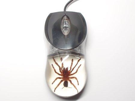 (Lucite Treasures Computer Mouse Tarantula White)