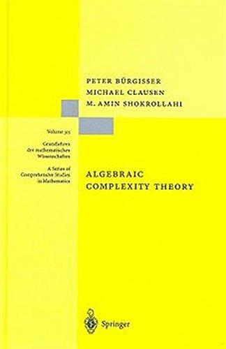 Algebraic Complexity Theory (Grundlehren der mathematischen Wissenschaften)