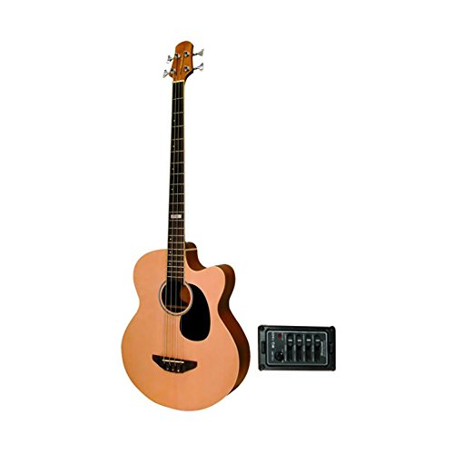 Trinity River OB3CENSZ Eagle Acoustic/Electric Bass Guitar with Spruce Top by Trinity River