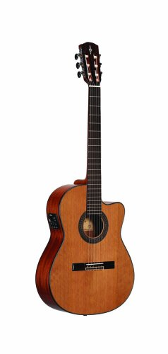 Alvarez AC65HCE Acoustic-Electric Guitar (Alvarez Electric Guitar Acoustic)