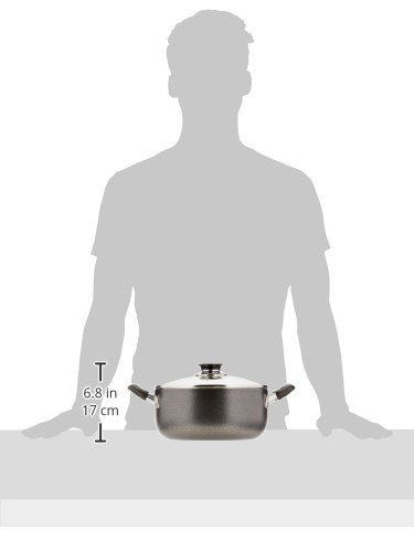 2 Handle Non-Stick Sauce Pot With Glass Lid 5 Qt