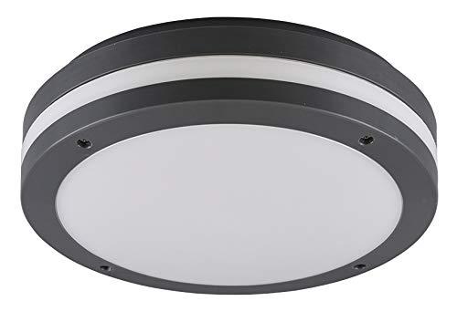 Reality Leuchten Kendal R62151142 - Lámpara LED de techo ...