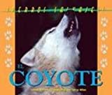 El Coyote, Barret and Allen, 1410300137