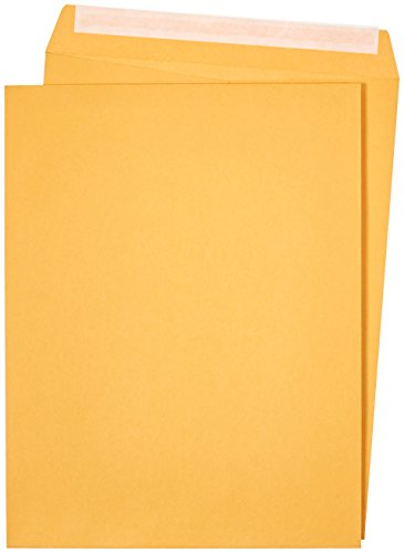 AmazonBasics Catalog Mailing Envelopes, Peel & Seal, 10x13 Inch, Brown Kraft, 100-Pack (Shipping Envelopes 10x13)