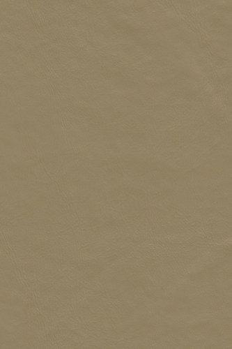 (Galaxy Heavyweight Vinyl Tablecloth, 52X108 Oblong (Rectangle), Stone [Kitchen])