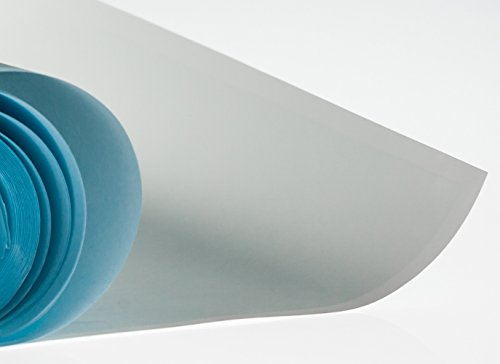 UltraCruz PVDF Transfer membrane, 0.45 ?m, 30 cm x 3 m roll