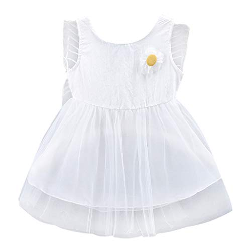 Toddler Kid Baby Girls Clothes 3D Floral Wing Tulle Party Princess Dress One-Piece Skirt Dress Set 6M-24M