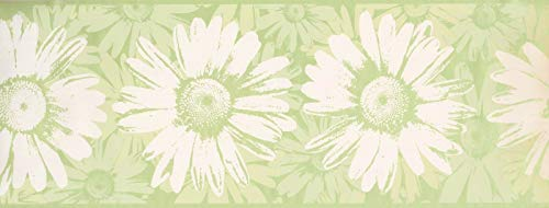 "BT2729B Key Lime Daisies Wallpaper Border 9.5"" x 15"