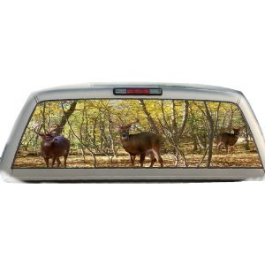Buck Woods- 22 Inches-by-65 Inches- Rear Window Graphics (Rear Window Fishing Graphics compare prices)