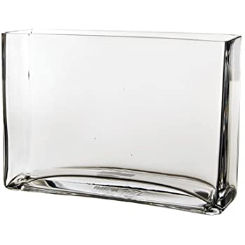 Amazon Cys Brand Trademark Rectangle Glass Vase H 7 Open 10