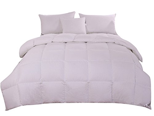 Bay Rich Luxury 90% Goose Down Comforter/Quilt/Duvet, 100% Organic Cotton Cover,300TC Soft Winter Comforter (King 100x90inch(254x229cm), White)
