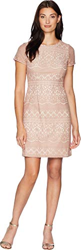 Adrianna Papell Women's Scalloped Striped Lace A-Line Dress with Cap Sleeves, Pink/Almond, 2 from Adrianna Papell
