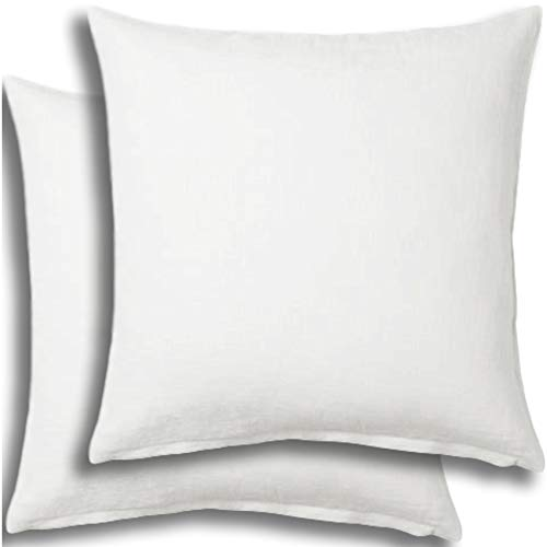 Set of 2 - Pillow Insert 30x30 Decorative Throw Pillow Inserts - Euro Sham Stuffer for Sofa Bed Couch Square White Form 2 Pack - Hypoallergenic Machine Washable and Dry Polyester - Made in USA