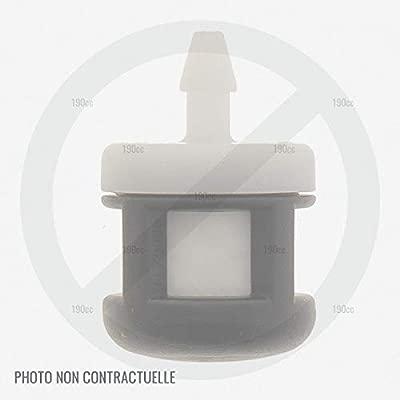 Voltor GABC34175 - Filtro de Gasolina para desbrozadora ...