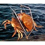 "Crab Trap Net with Bait Holder ~ Fish with your Fishing Pole Rod 15"" x 12"""