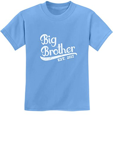 Price comparison product image TeeStars - Gift for Big Brother 2017 Youth Kids T-Shirt Small California Blue