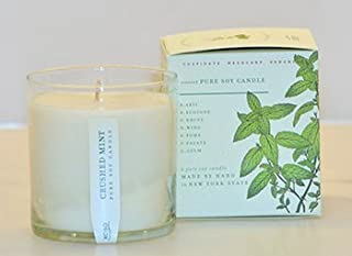 product image for Crushed Mint Soy Candle in Plantable Box