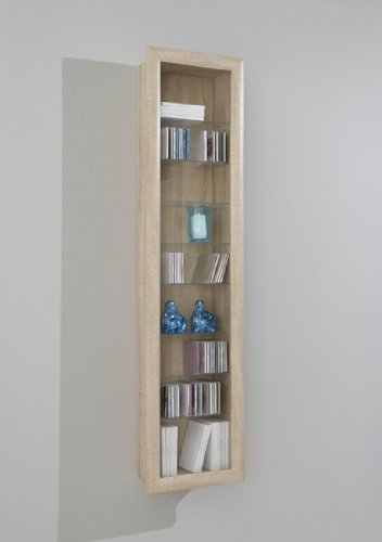SHOWCASE II Wall Mounted Glass Display Case Cabinet Unit with ...