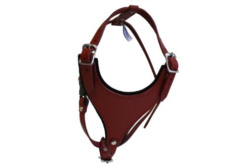 Leather doggy Harness, Felt Padded, Medium, Red, Argentinean Leather (Malibu) For Med breeds. Neck sizes: 10.5