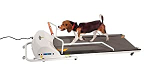 4. GoPet Treadmills Petrun 700 for Small - Medium Dogs