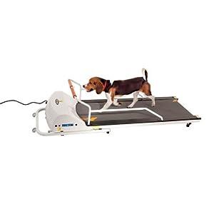 GOPET Treadmill SmallMedium (<132lbs) 23