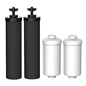 Gut Health Shop 31-bynUJgJL._SS300_ FilterLogic Water Filter, Compatible with Black Filters (BB9-2) & Fluoride Filters (PF-2) Combo Pack and Gravity Filter…
